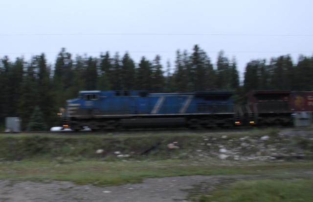 CEFX 1041