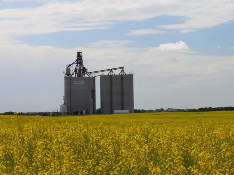 Grain elevator in Balgonie Saskatchewan
