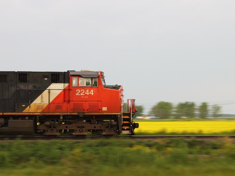CN 2244 and canola in Winnipeg