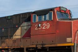 CN 2529 outside Winnipeg, MB 2013/08/30