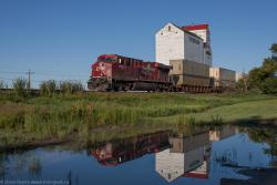 CP 8773 passes the elevator in Mortlach, SK 2013/07/14 Buy