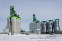 The two Cargill grain elevators in Morris, Manitoba 2014/02/23