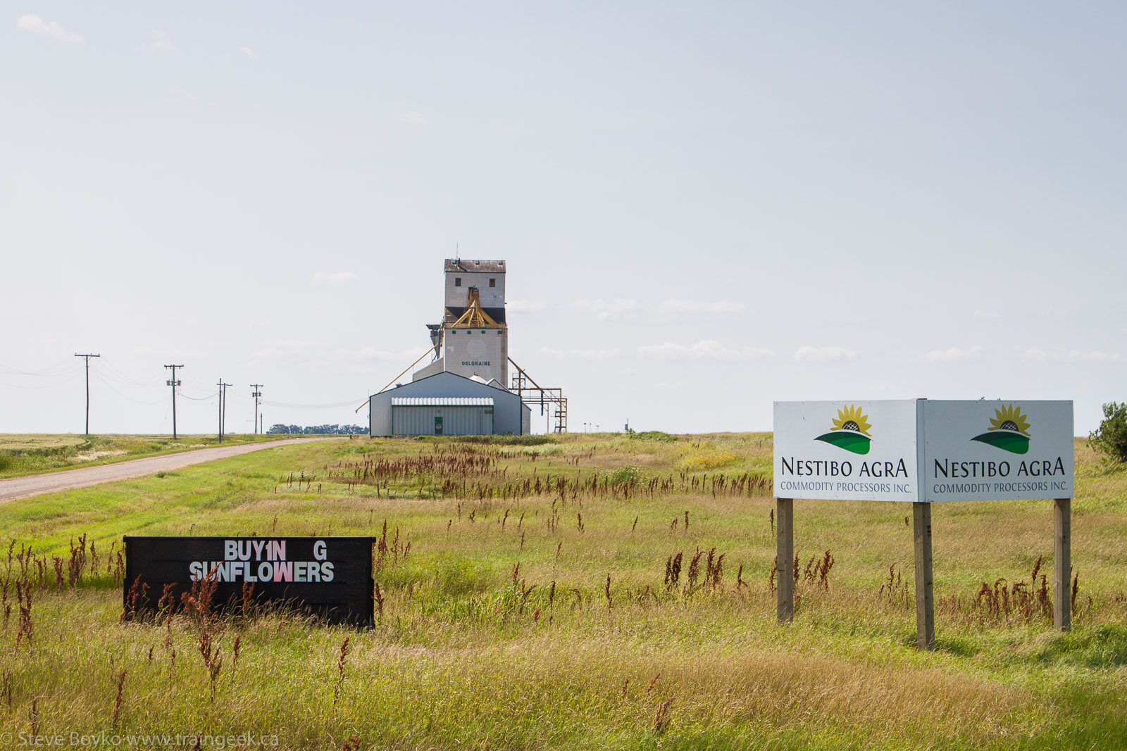 The Nestibo Agra grain elevator in Deloraine, MB 2014/08/08