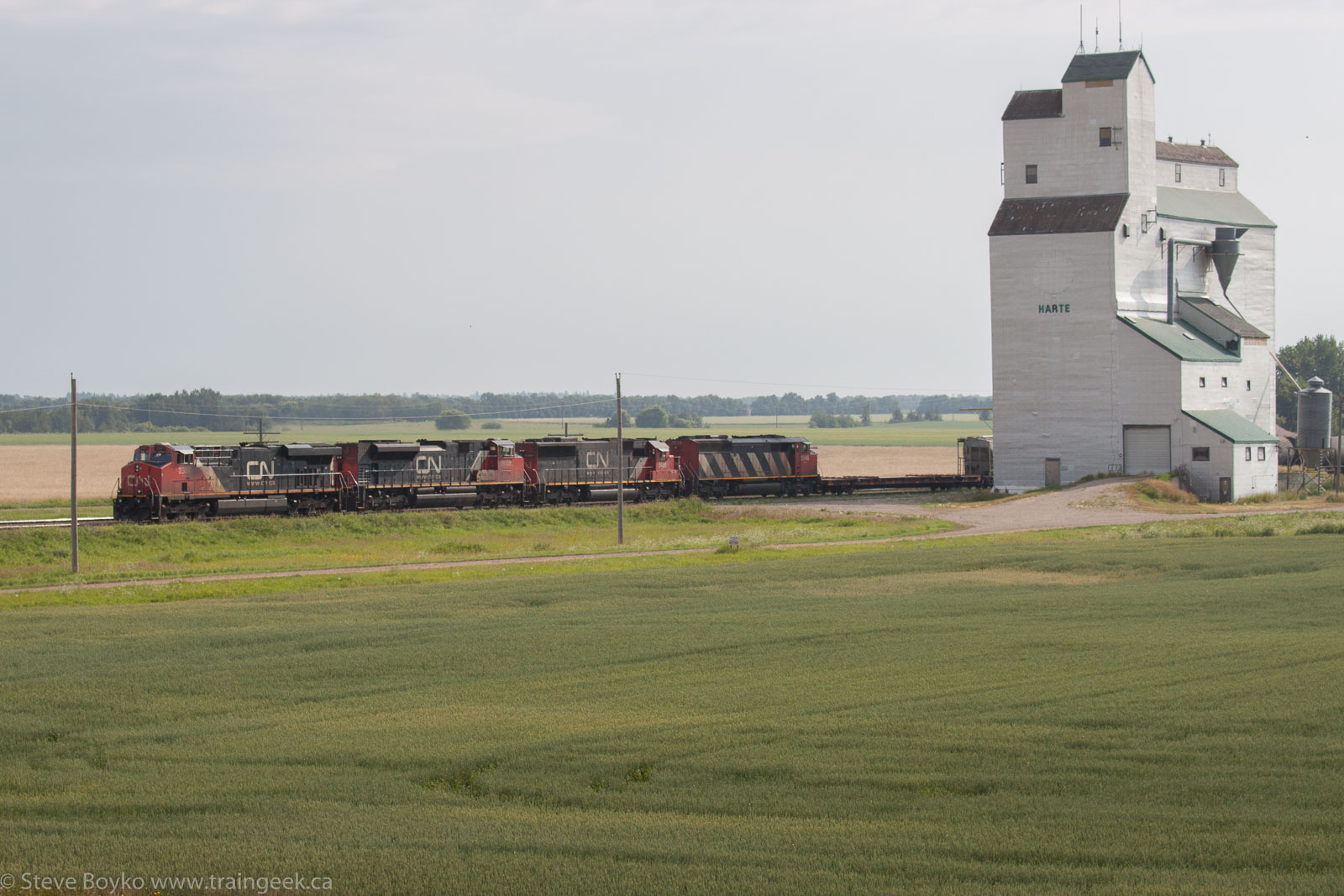 CN 2307, 8009, 5480, and 5548 at Harte, MB 2014/08/04