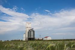 The Holland, MB grain elevator 2014/08/08