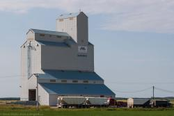 The Mariapolis, MB grain elevator 2014/08/08