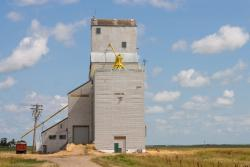 The former Manitoba Pool grain elevator at Nesbitt,MB 2014/08/09