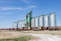 The Cargill grain elevator in Blackie, AB 2016/05/15