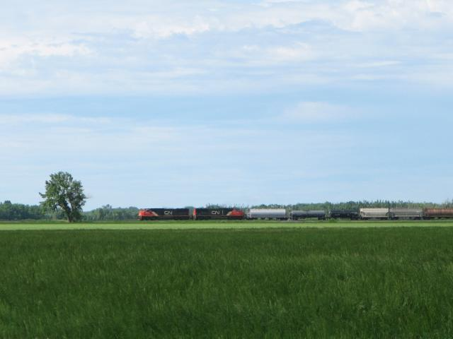 CN 5685 Leaving Portage la Prairie, MB 2009/06/23