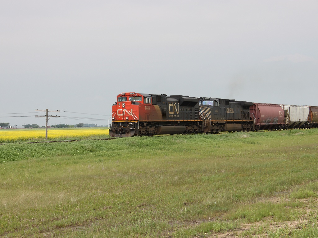 CN 8834 near Winnipeg, MB 2010/07/03