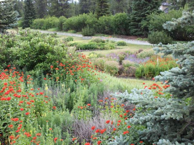 Lake Louise Station Garden