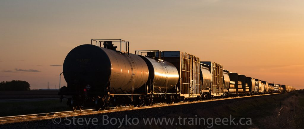A variety pack of freight cars