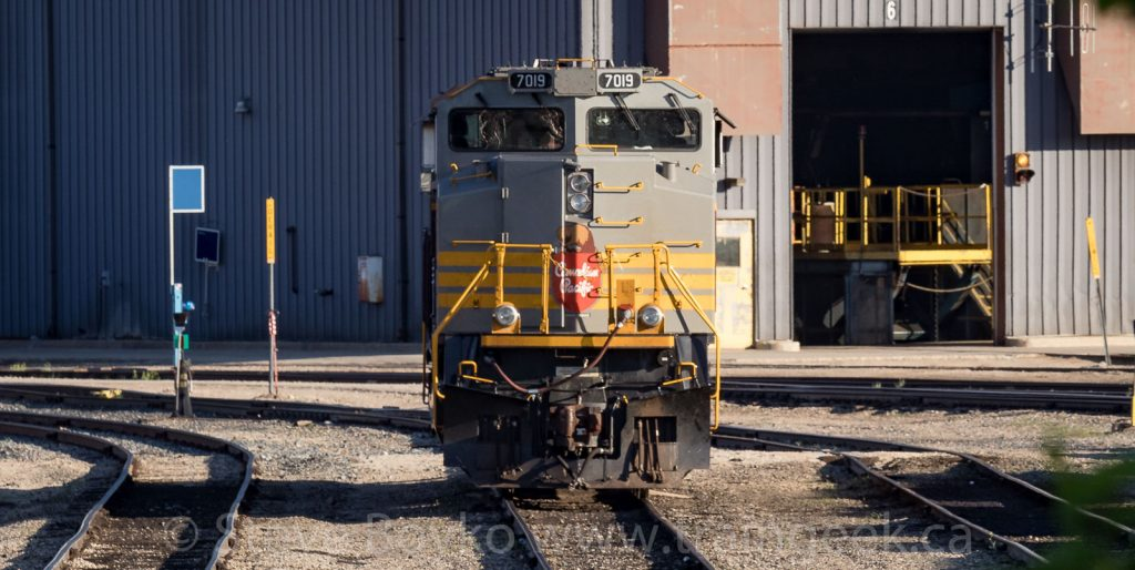 Nose view of CP 7019