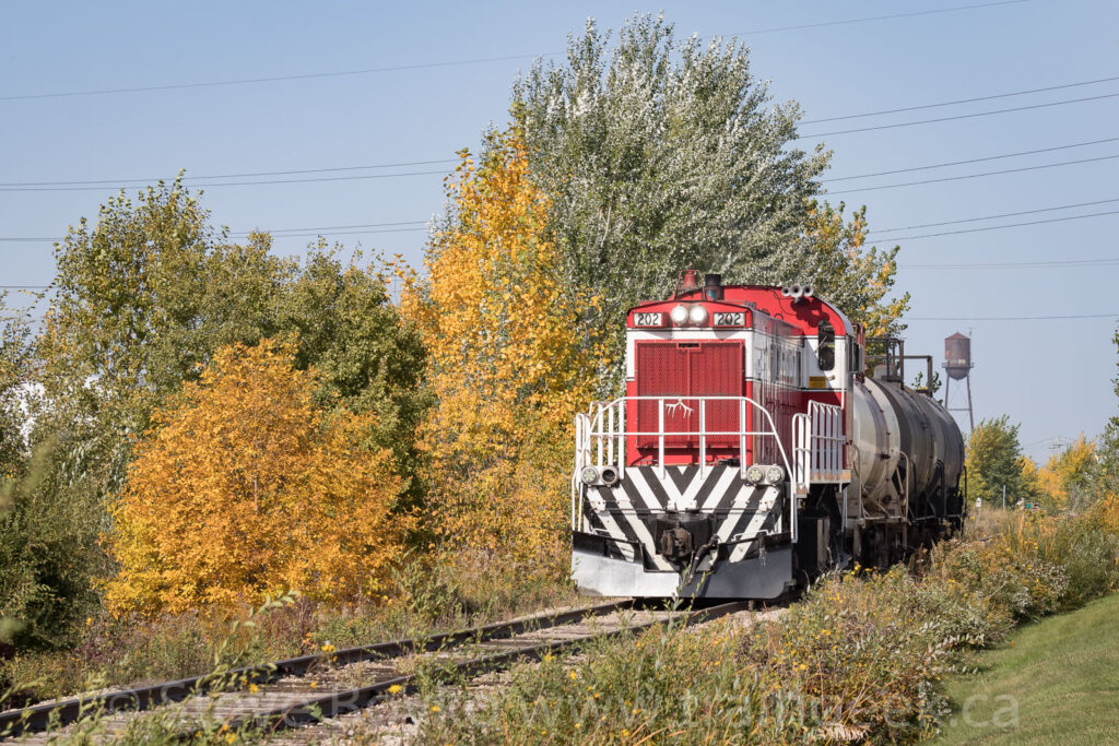 GWWD 202, fall colours, and the water tower