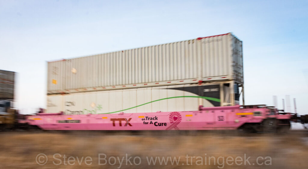 TTX - on Track for A Cure